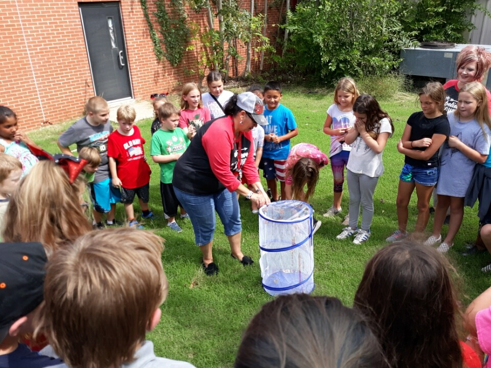 Mrs. Ogle and her class released their butterflies today.